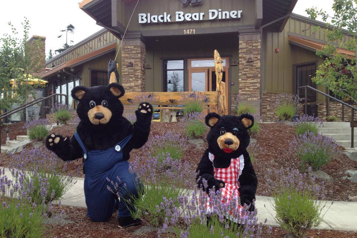 Welcome to the Black Bear Diner, Sequim